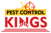 Pest Control Kings